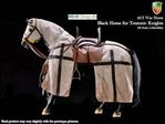 H03A ACI - Horse for Teutonic Knights - Black 1:6